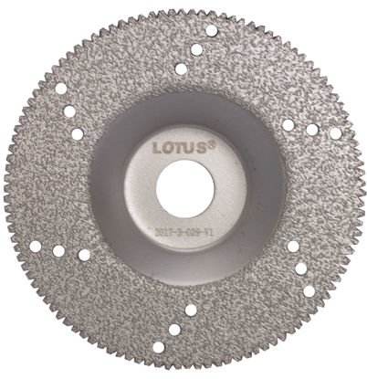 Picture of Lotus LDC100GC TI Coated Diamond C/G Disc